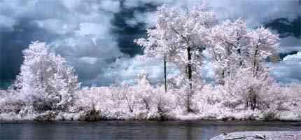 infrarrojos.jpg