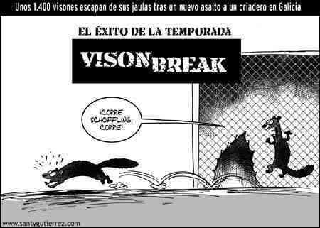 vison_break.jpg