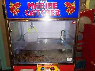 lobster-game