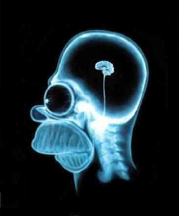 radiografia.jpg
