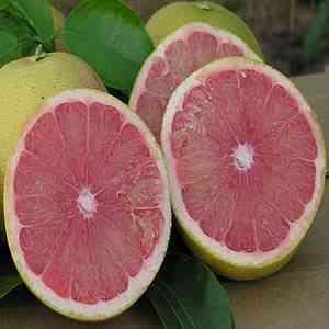 pomelos ecologicos