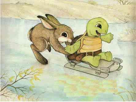 cue conejo2