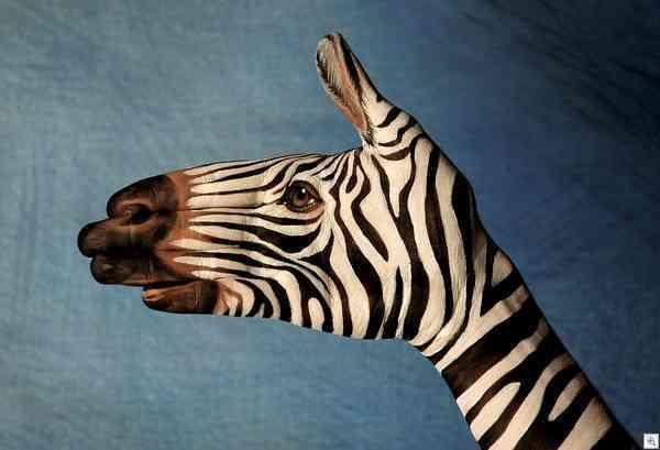 imageshand made giraffe thumb
