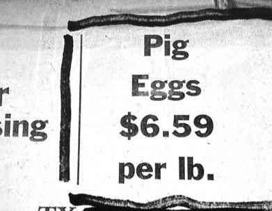 imagespig eggs