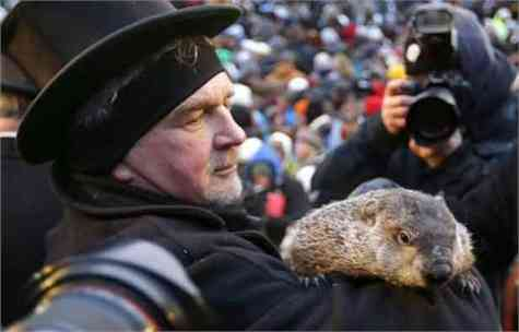 pena muerte marmota