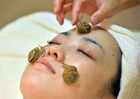 japon tratamiento caracoles