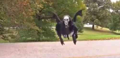 halloween esqueleto volador