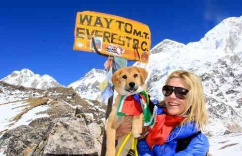 Rupee Everest