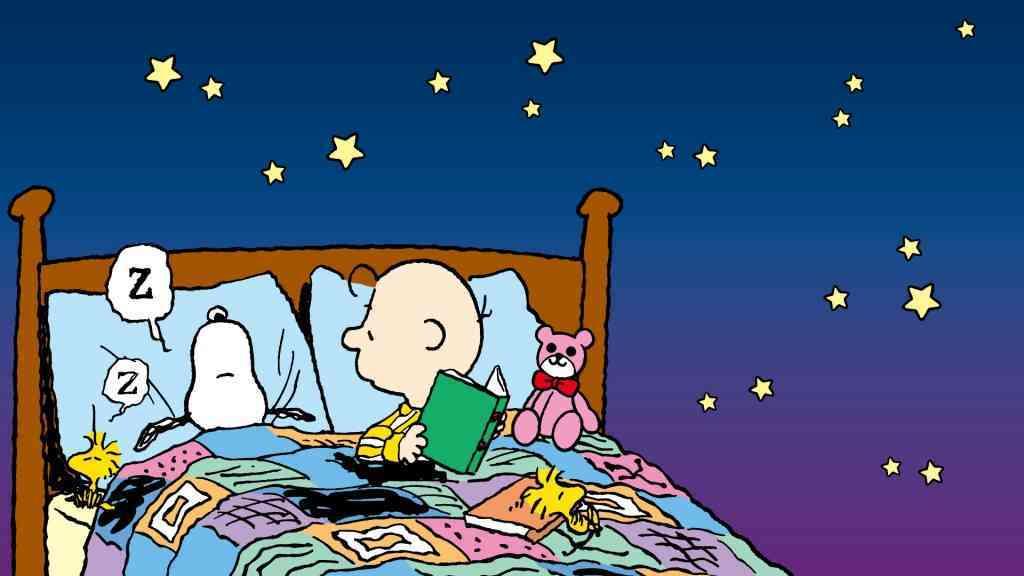 Charlie Brown Snoopy Peanuts